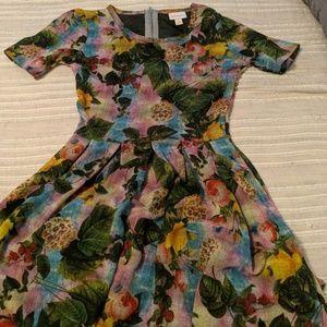 Dresses & Skirts - Xs lularoe amelia